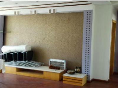 望海公园 精装三室低价出租 视野好 繁华地段 价格实惠
