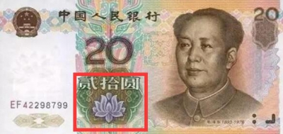 第五套人民币上有六朵花你了解吗